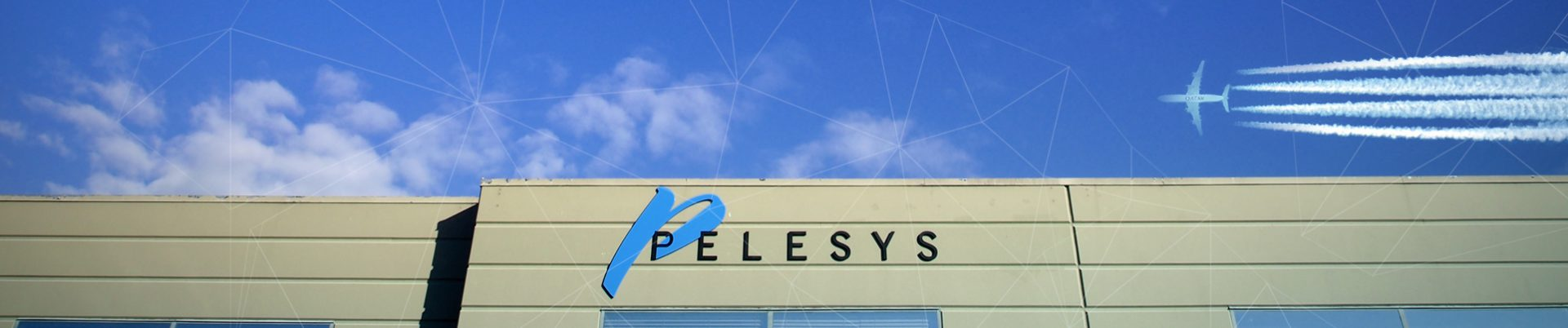 Pelesys Aviation Training Courseware