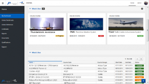 Pelesys updated training management and deployment dashboard